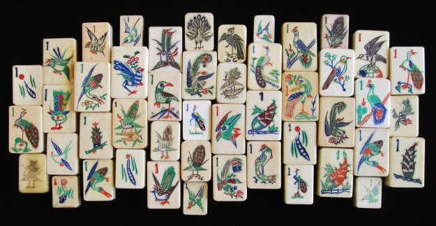 nov 18, 2014 birds 007
